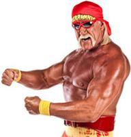 Authentic Hulk Hogan Autographed Items